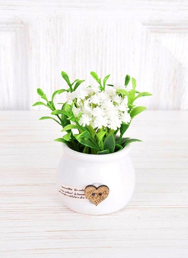 Saksılı Çiçek-The Mia